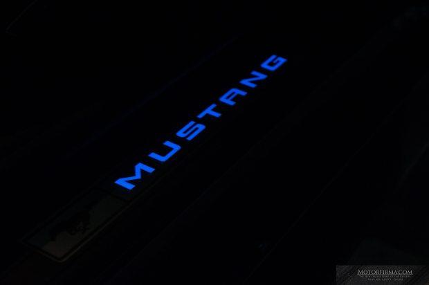 mustang-edit-170213-8-of-12